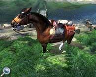 Plugin für Oblivon - Rund ums Pferd - jedes Pferd ist einzigartig