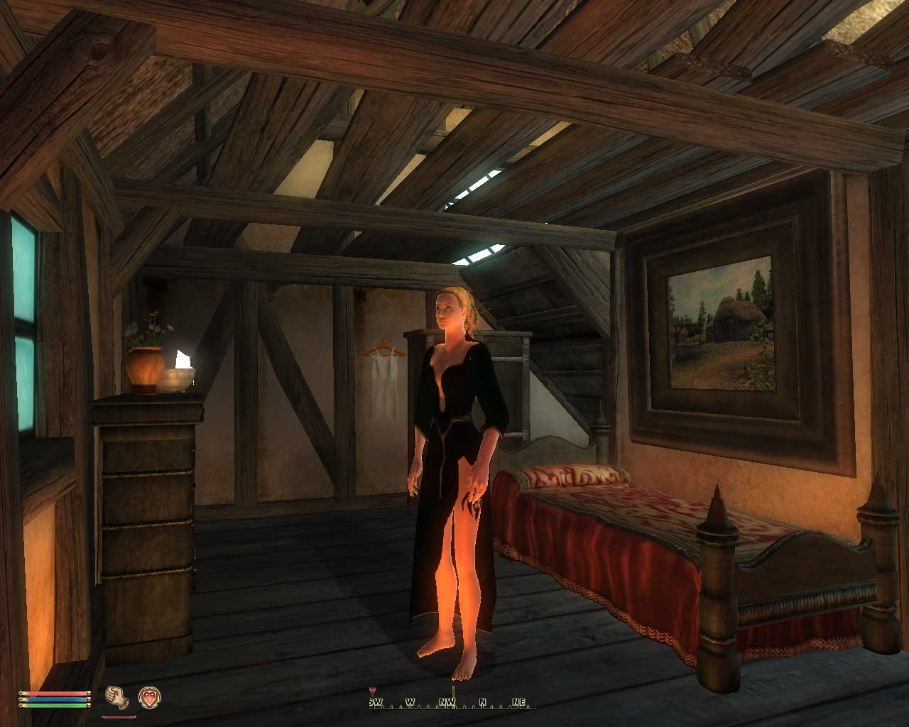 oblivion dating mod The blockbuster the elder scrolls iv: oblivion provides a leap forward in role-playing with its combination of freeform gameplay and cutting-edge graphics for the world under the elder scrolls.