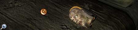 Oblivion, der abgetrennte Kopf der Mutter, entlarvt für dich den Verräter der Dunklen Bruderschaft.
