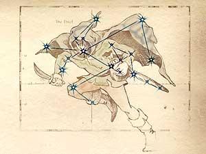 Oblivon Astrologie - Sternzeichen: Der Dieb
