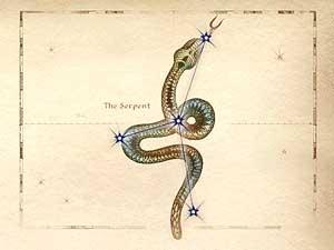 Oblivon Astrologie - Sternzeichen: Die Schlange